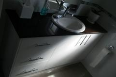 dlux_bathroom1